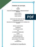 TESINA PRÁCTICA CONSTITUCIONAL.docx