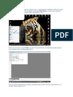 Slikanje desktopa