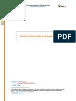 Division Organizativa y Empresarial