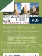 cartell diada torres (1).pdf