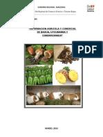 Boletin Informativo Agricola y Comercial de Bagua
