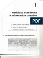 Capítulo I_Actividad económica e Info Contable