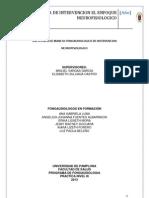 GUÍA TÉCNICA DE INTERVENCIÓN ENFOQUE NEUROPSICOLÓGICO - NEUROFISIOLÓGICO
