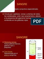 FISIOLOGIA_DE_LA_SANGRE.ppt