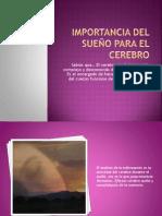 Importancia deL sueño para el cerebro
