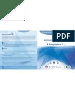 Dip Tico Flagship Web