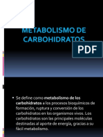 Nutricion Animal Metabolismo de Carbohidratos