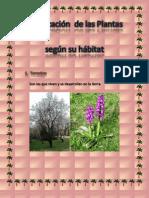 Clasificación de las plantas según se habitat