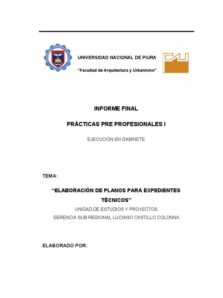 Informe de practicas pre profesionales for Practicas estudio arquitectura