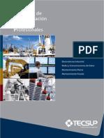 PEPP-2013-Gestion-Estratégica