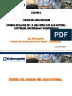 130122-Ing. Otilia Aguirre-teoria Del Origen Del Gas