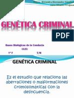 Genética Criminal!