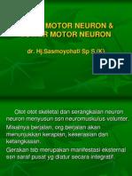 SUSUNAN NEUROMUSKULUS