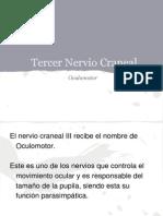 Par Craneal (1)