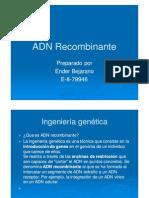 ADNRecombinante