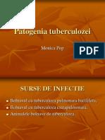 Patogenia Tbc.doc