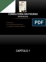 CONSULTORÍA SIN FISURAS CAP 1