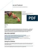 Chicken Diseases and Treatment