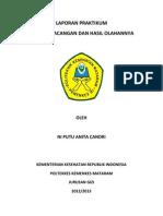 IPD 2