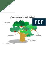Vocabulario Del Arbol