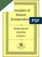 Principles of Islamic Jurisprudence [Paperback]Prof. Mohammad Hashim Kamali (Author)