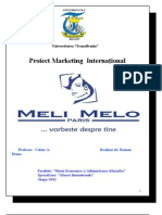 proiect maketing melimelo.doc
