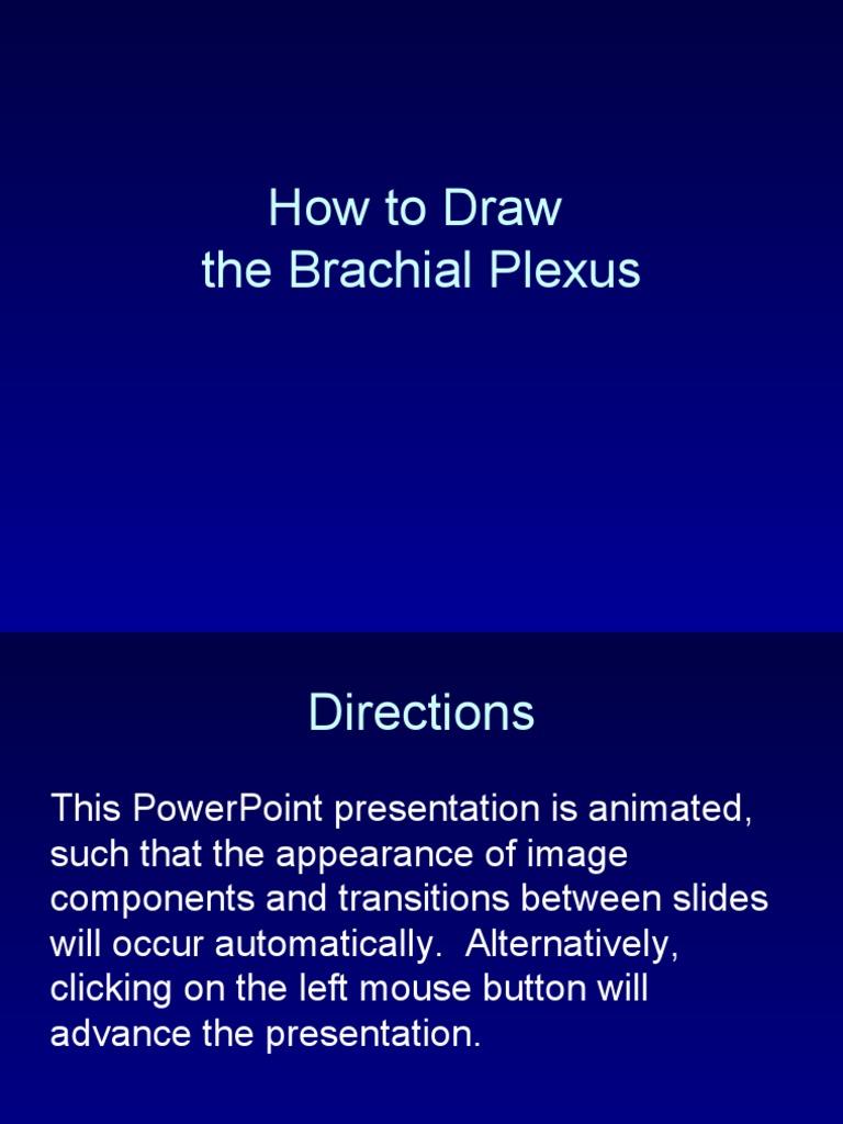 How to Draw Brachial Plexus   Arm   Limbs (Anatomy)