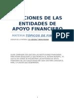 Funciones de Las Entidades de Apoyo Financiero
