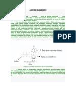 ÁCIDOS NUCLÉICOS - bio mol.docx