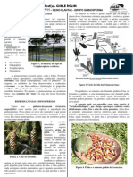 PR+ë-T+ëCNICO-BIOLOGIA-GISELE-FICHA11