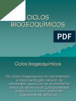 ciclos_biogeoquimicos