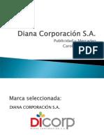 Arroz Diana