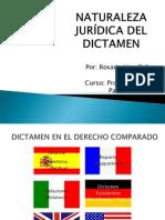 NATURALEZA JURÍDICA DEL DICTAMEN