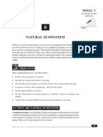6 Natural Ecosystem description readout