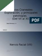 Nervios Craneales del VII al XII.pptx