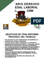 Balotarioderecho Procesal Penal CNM