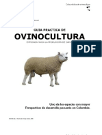 Manual Cria Ovinos Produccion Carne