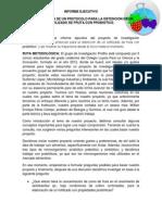 informe ejecutivo proyecto 1
