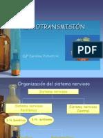5.Neurotransmision