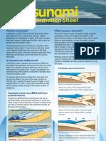 WTsunami Information Sheet