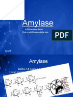 Amylase