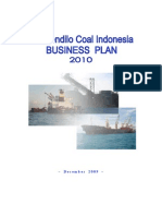 KCI ~ Biz Plan 2010