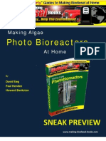 Making a photo bio-reactor
