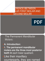 Difference Between Mandibular First Molar and Second Molar