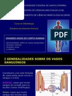 Anatomia Dos Grandes Vasos