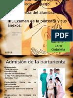 Asistencia Medica Del Tdp