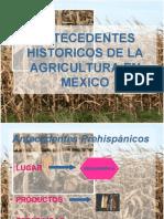 Antecedentes de La Agricultura en Mexico