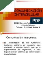 Comunicacion_Intercelular_14.03.13