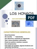 5.Los Hongos
