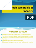 Audit Financier Et Comptable